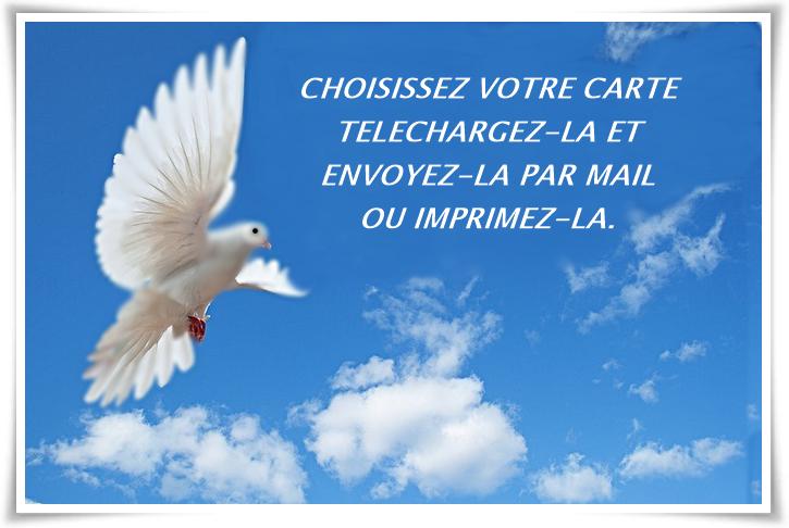 Populaire Carte condoléances CN63